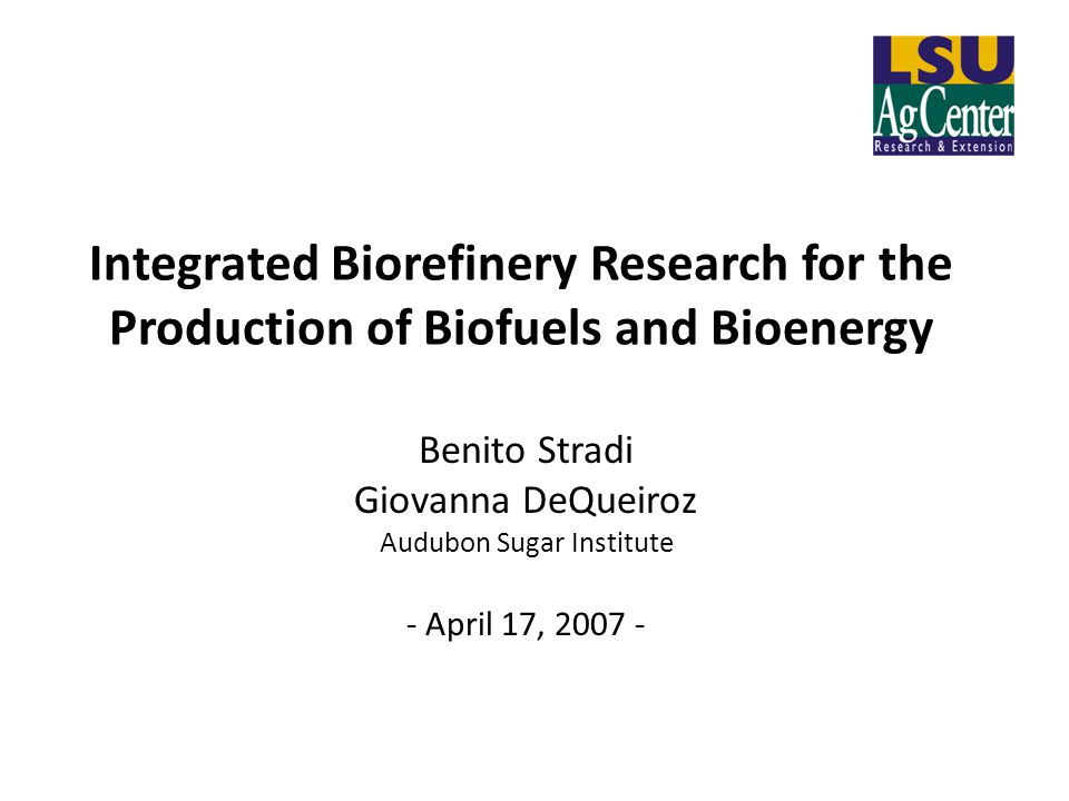 Integrated Biorefinery Research for the Production of Biofuels and Bioenergy Benito Stradi Giovanna DeQueiroz Audubon Sugar Institute - April 17, 2007 -