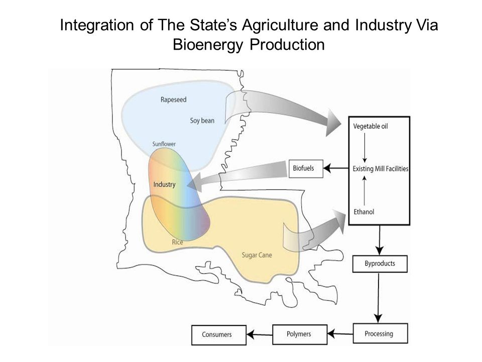 Integration of The States Agriculture and Industry Via Bioenergy Production