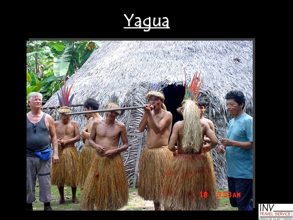 Yagua