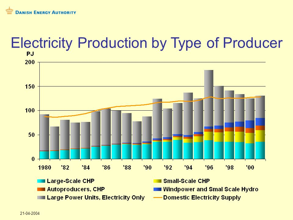 21-04-2004 Electricity Production by Type of Producer