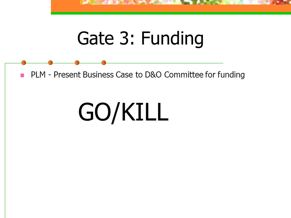 Gate 3: Funding PLM - Present Business Case to D&O Committee for funding GO/KILL