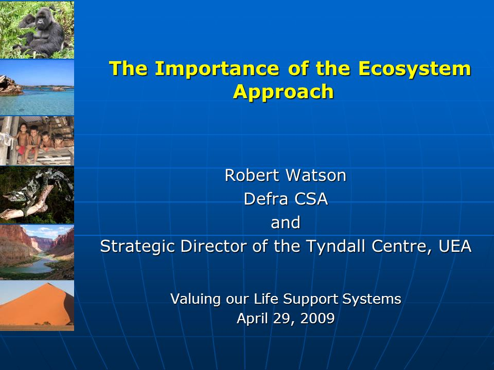 The Importance of the Ecosystem Approach The Importance of the Ecosystem Approach Robert Watson Defra CSA and Strategic Director of the Tyndall Centre