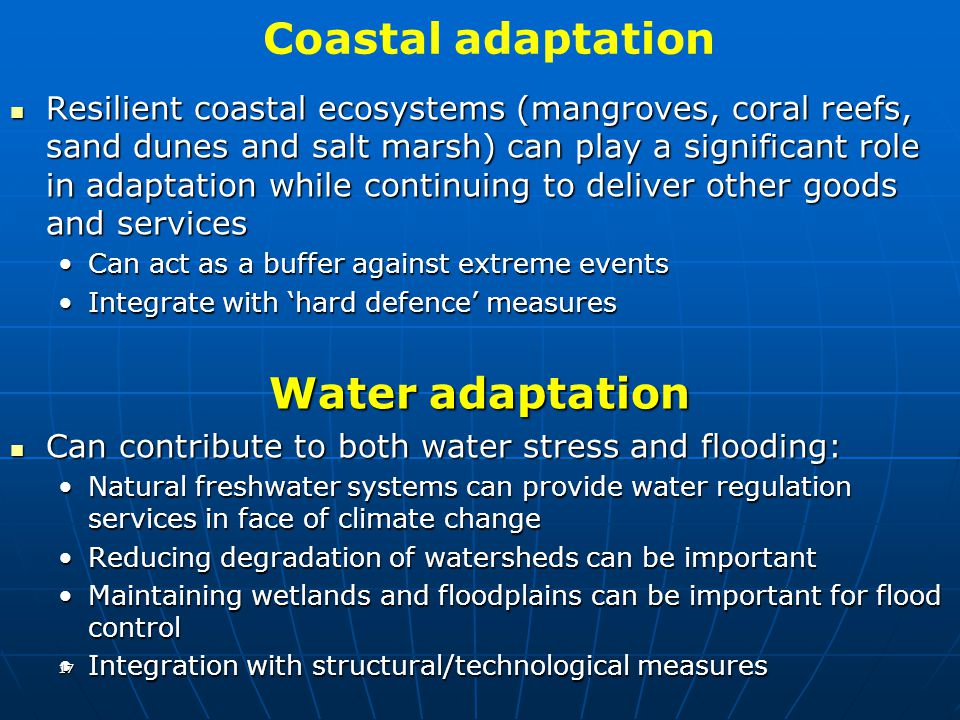 Coastal adaptation Resilient coastal ecosystems (mangroves, coral reefs, sand dunes and salt marsh) can play a significant role in adaptation while co