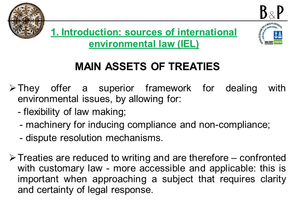 MAIN ASSETS OF TREATIES They offer a superior framework for dealing with environmental issues, by allowing for: - flexibility of law making; - machine
