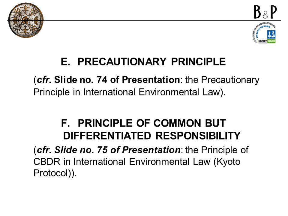 E.PRECAUTIONARY PRINCIPLE (cfr. Slide no. 74 of Presentation: the Precautionary Principle in International Environmental Law). F.PRINCIPLE OF COMMON B