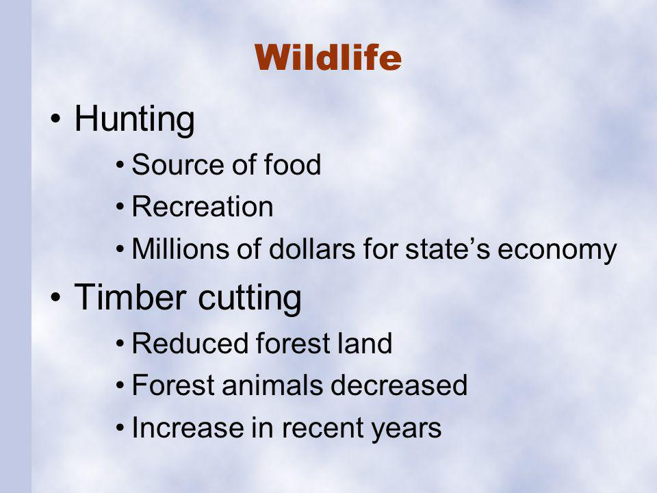 Wildlife Hunting Source of food Recreation Millions of dollars for states economy Timber cutting Reduced forest land Forest animals decreased Increase in recent years