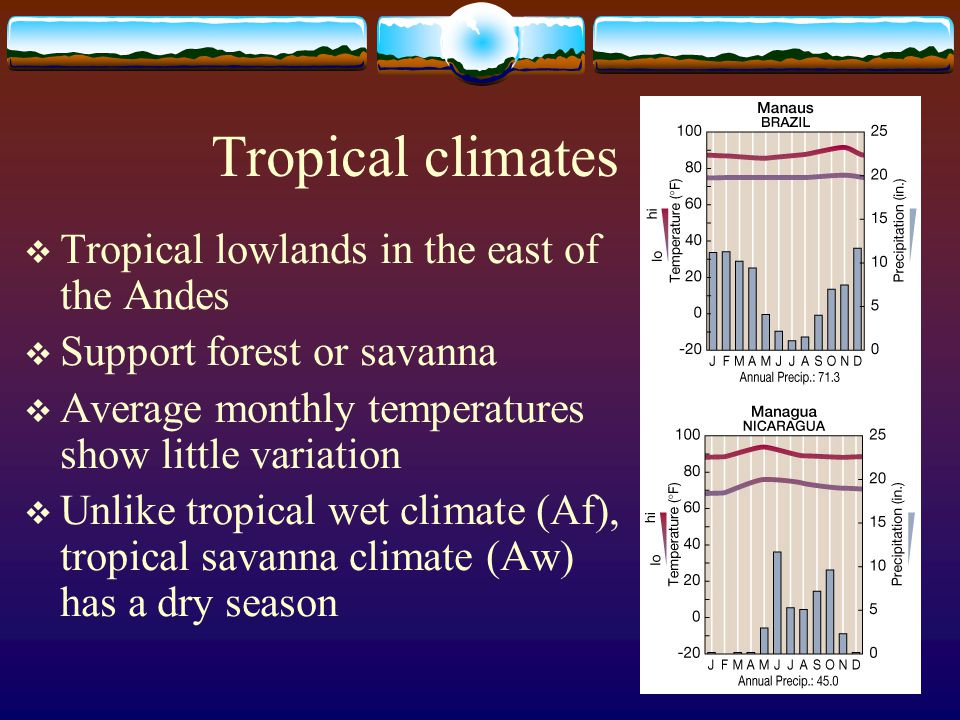 Tropical climates Tropical lowlands in the east of the Andes Support forest or savanna Average monthly temperatures show little variation Unlike tropi