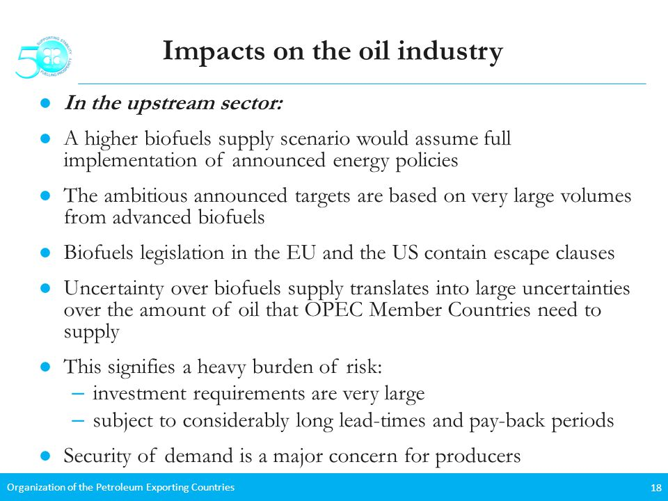 Organization of the Petroleum Exporting Countries 18 Impacts on the oil industry In the upstream sector: A higher biofuels supply scenario would assume full implementation of announced energy policies The ambitious announced targets are based on very large volumes from advanced biofuels Biofuels legislation in the EU and the US contain escape clauses Uncertainty over biofuels supply translates into large uncertainties over the amount of oil that OPEC Member Countries need to supply This signifies a heavy burden of risk: – investment requirements are very large – subject to considerably long lead-times and pay-back periods Security of demand is a major concern for producers