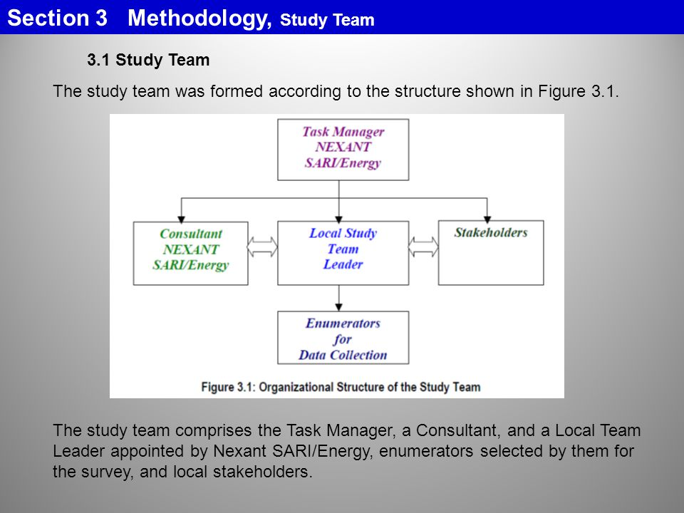 Section 3 Methodology, Study Team 3.1 Study Team The study team was formed according to the structure shown in Figure 3.1.