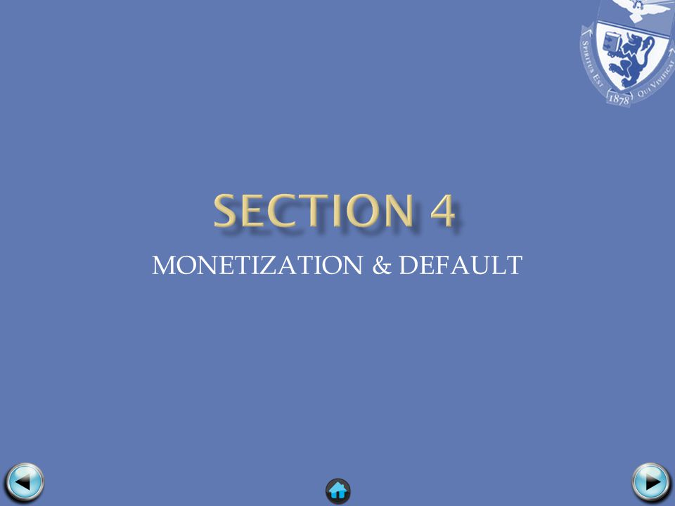 MONETIZATION & DEFAULT