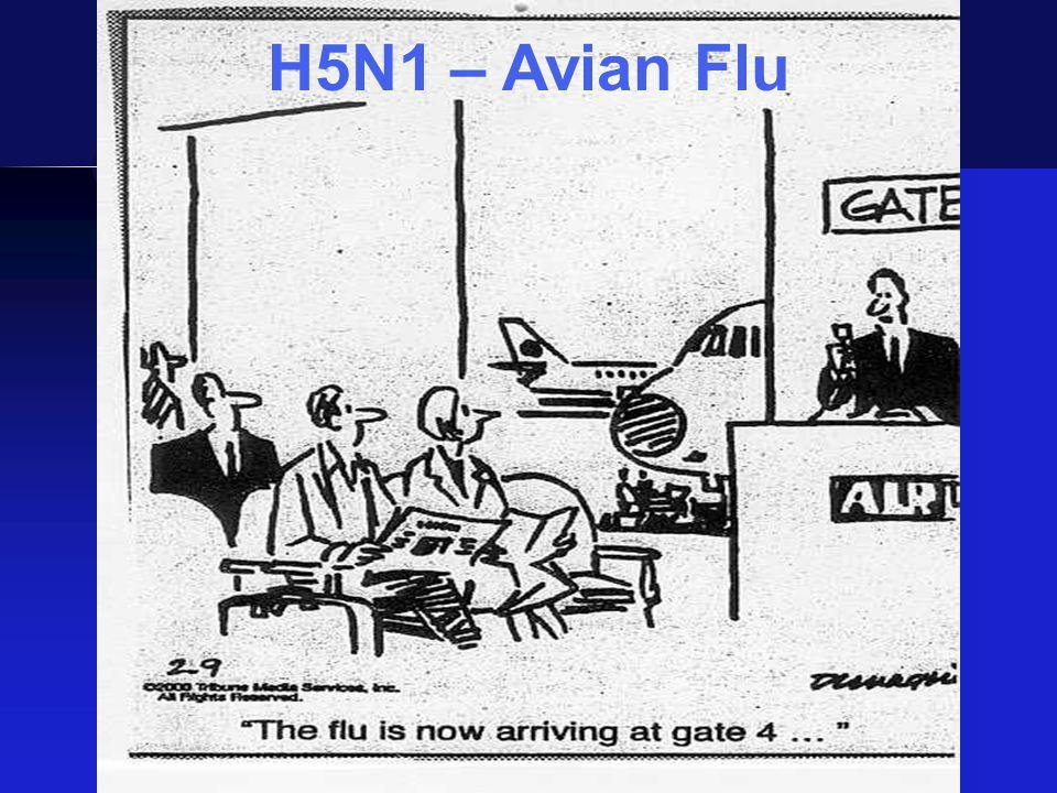 H5N1 – Avian Flu