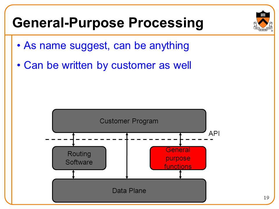 General-Purpose Processing As name suggest, can be anything Can be written by customer as well Data Plane Routing Software General purpose functions Customer Program API 19