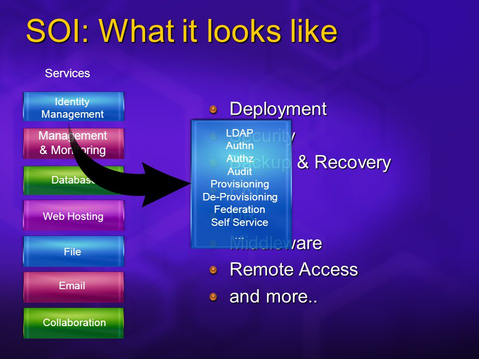 SOI: What it looks like Identity Management & Monitoring Database File Email Collaboration Web Hosting Services Subscribers CRM Publishers Portal