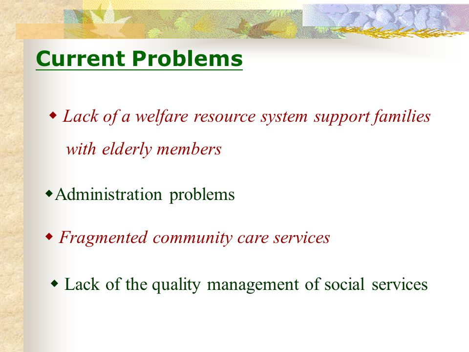 Lack of the quality management of social services Current Problems Lack of a welfare resource system support families with elderly members Fragmented community care services Administration problems