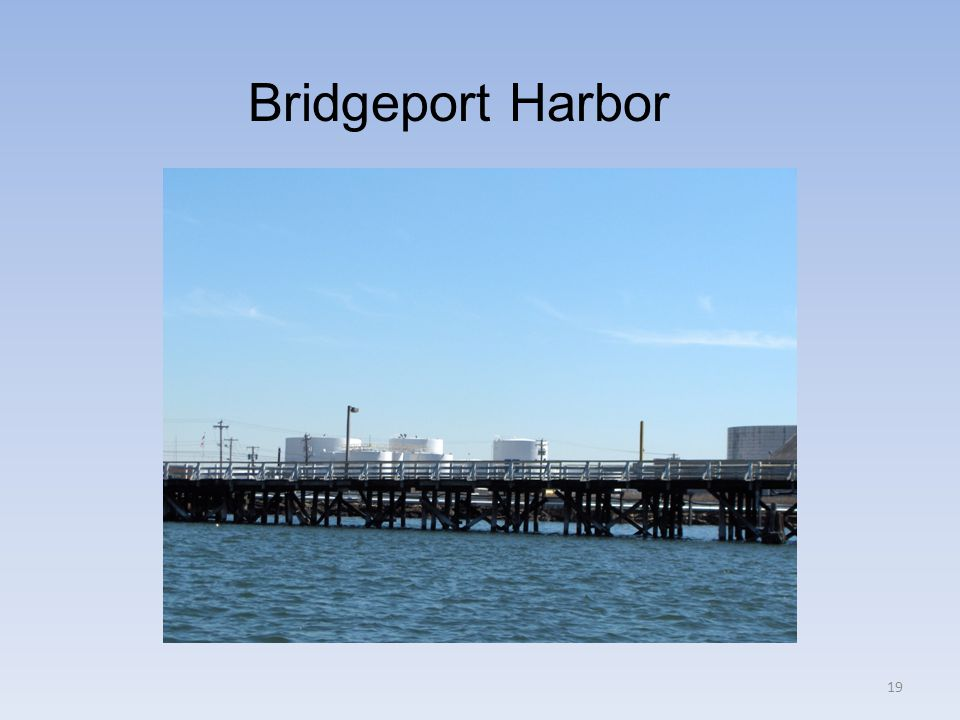 Bridgeport Harbor 19