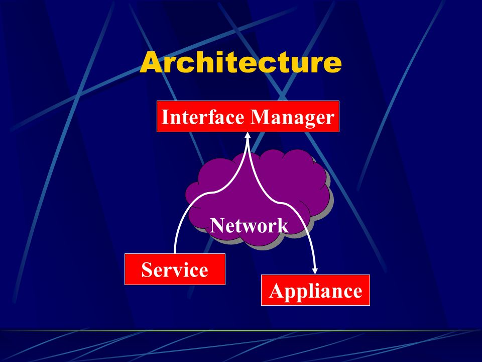 Architecture Network Interface Manager Service Appliance