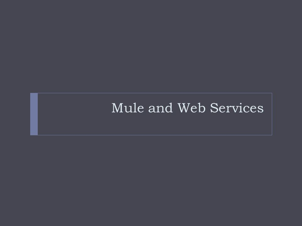 Mule and Web Services