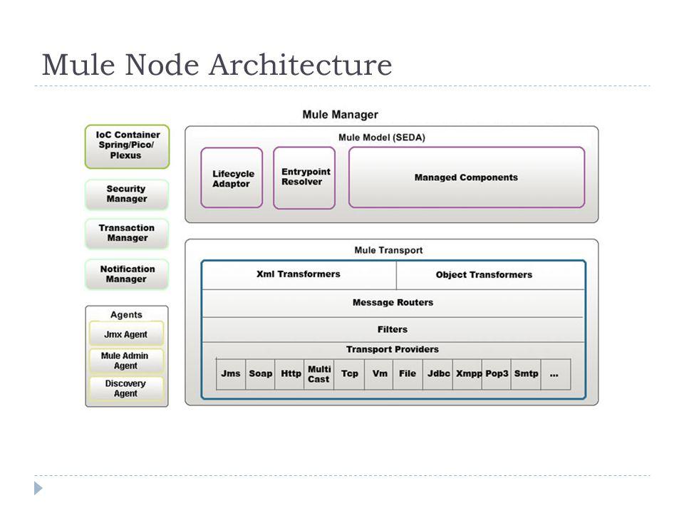 Mule Node Architecture