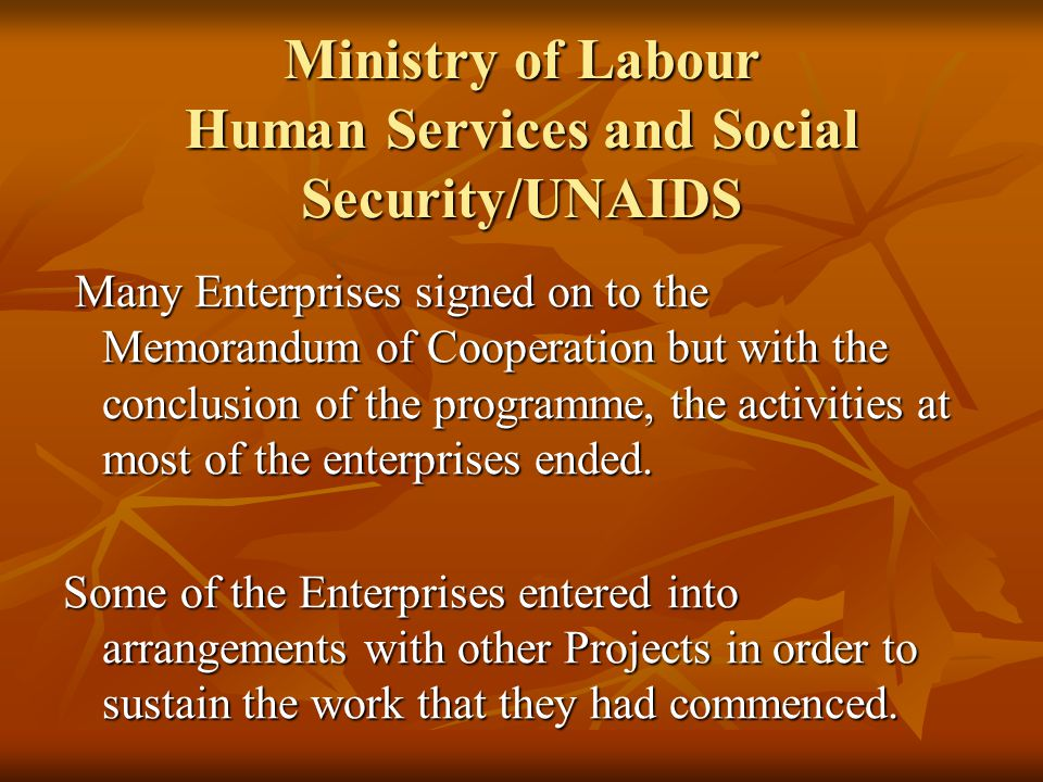 Ministry of Labour Human Services and Social Security/UNAIDS Many Enterprises signed on to the Memorandum of Cooperation but with the conclusion of the programme, the activities at most of the enterprises ended.