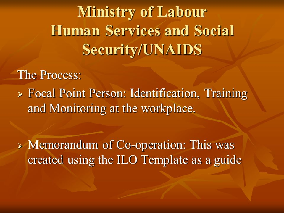 Ministry of Labour Human Services and Social Security/UNAIDS The Process: Focal Point Person: Identification, Training and Monitoring at the workplace.