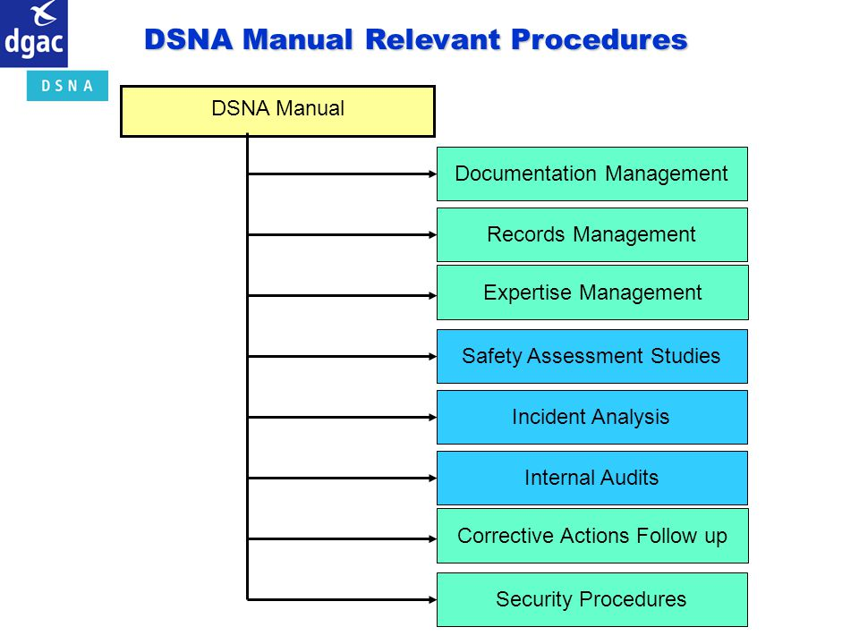 DSNA Manual Documentation ManagementRecords ManagementExpertise ManagementSafety Assessment Studies Incident AnalysisInternal AuditsCorrective Actions