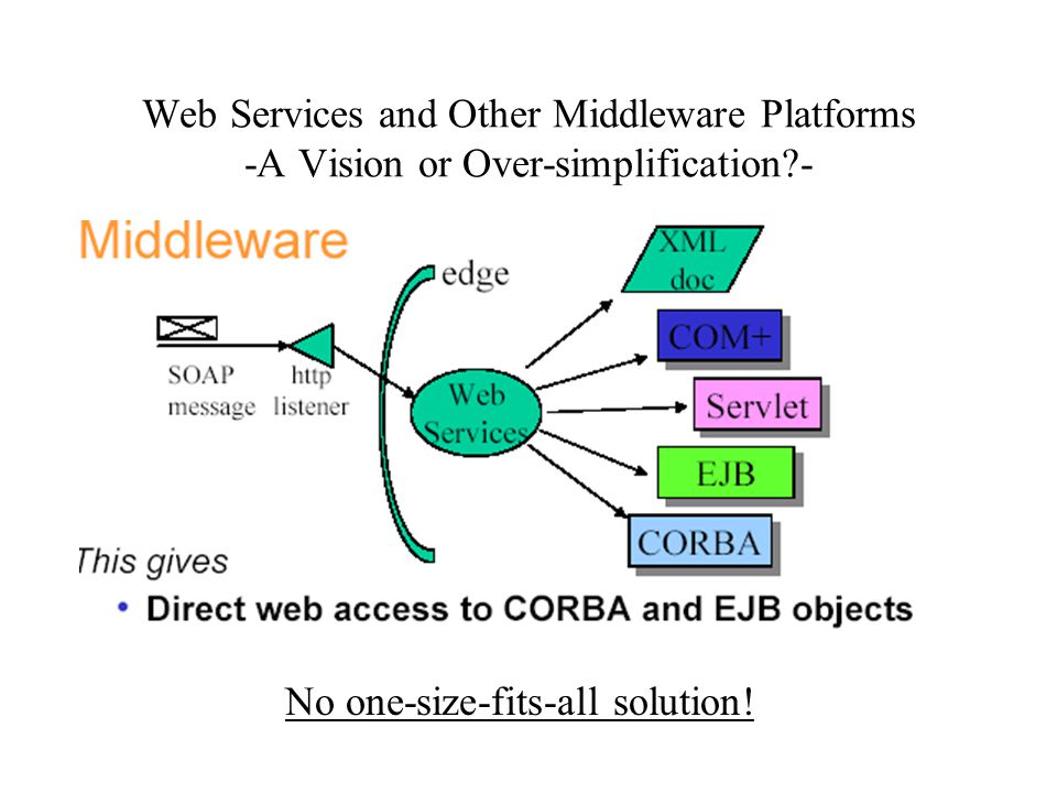 Web Services and Other Middleware Platforms -A Vision or Over-simplification?- No one-size-fits-all solution!