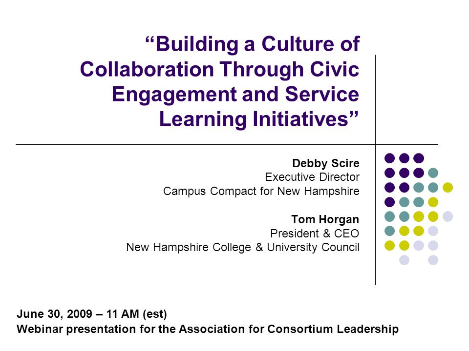 Overview Organizational Context and Campus Connections Dual Consortial Approach – a New Hampshire Initiative National Trends – Service Learning and Civic Engagement Definitions Addressing Higher Education Issues and Challenges Motivating Influences Importance of Leadership Expected Outcomes Funding Streams