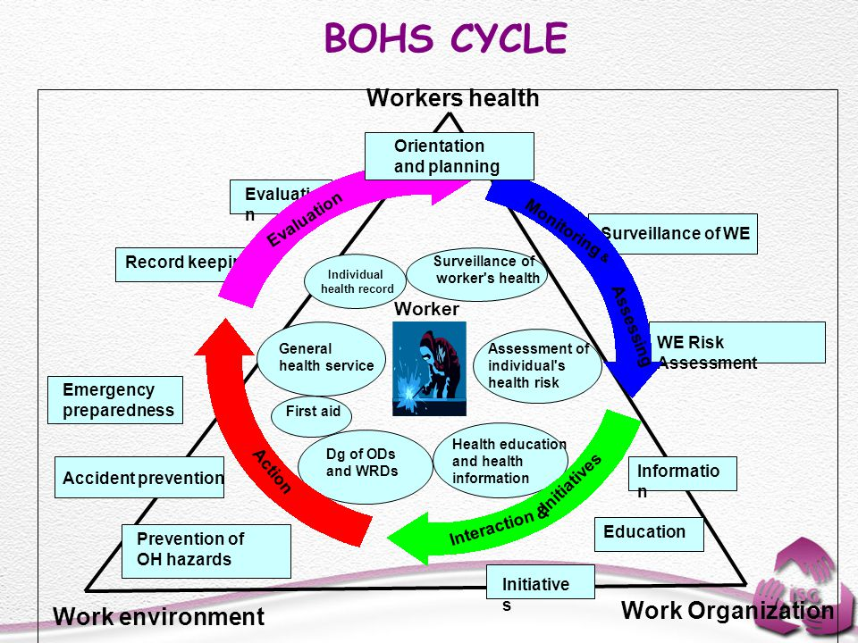 BOHS CYCLE Surveillance of WE WE Risk Assessment Initiative s Accident prevention Prevention of OH hazards Emergency preparedness Evaluatio n Record k