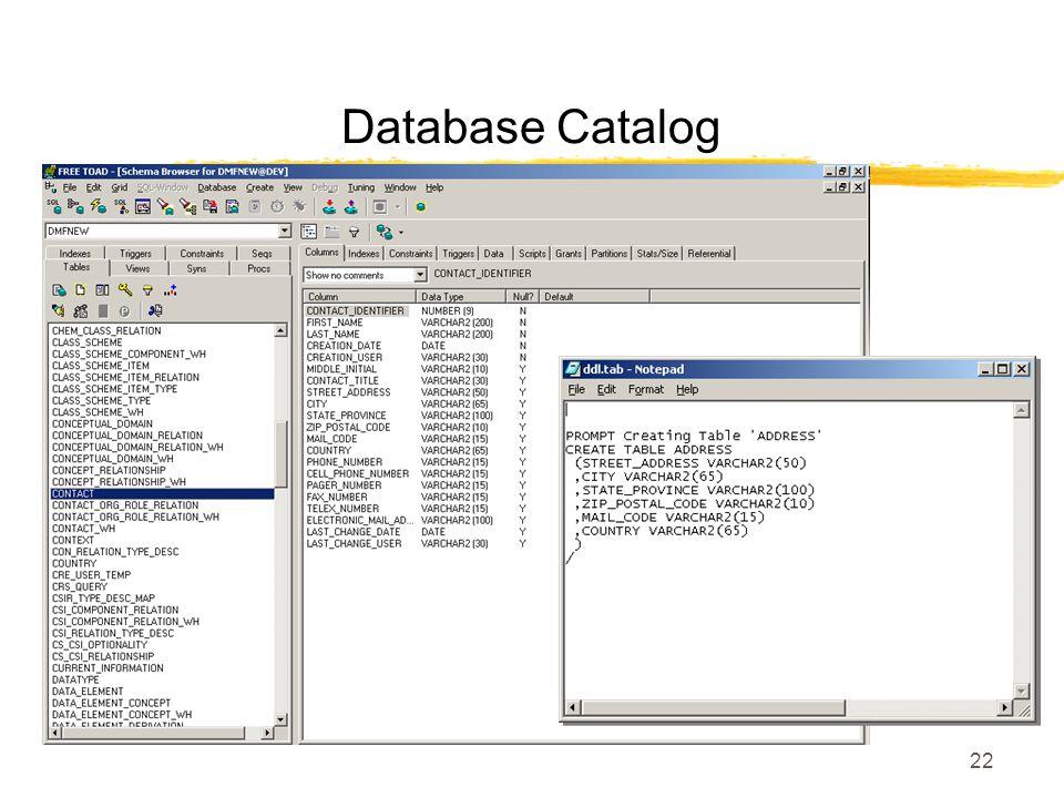 22 Database Catalog