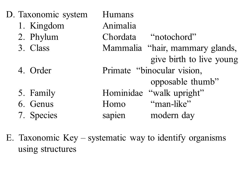 D.Taxonomic systemHumans 1. KingdomAnimalia 2. PhylumChordatanotochord 3. ClassMammalia hair, mammary glands, give birth to live young 4. OrderPrimate
