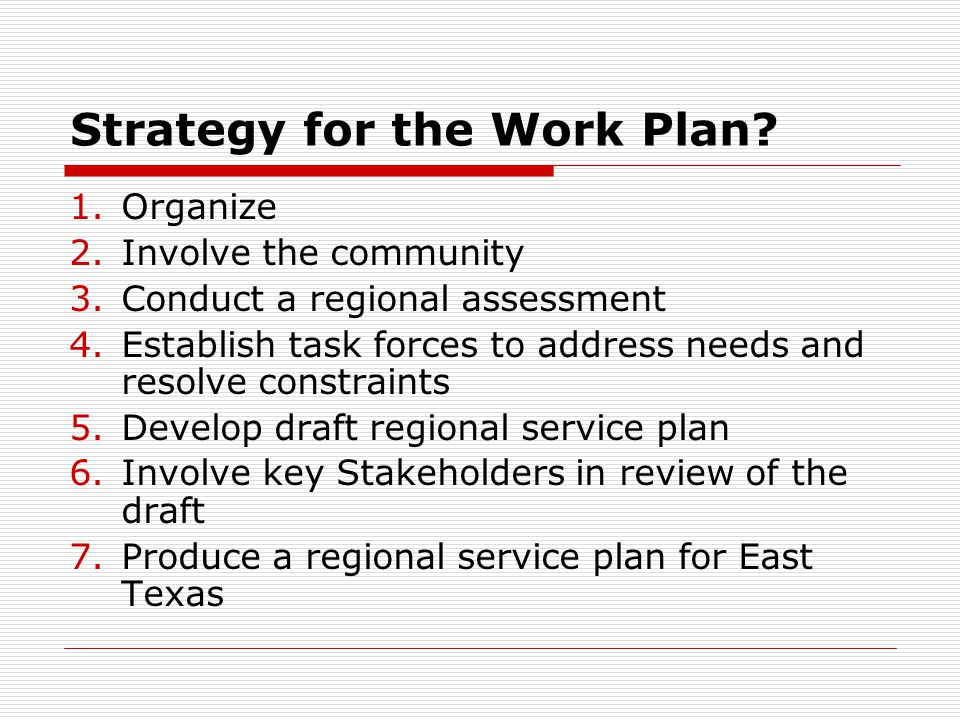 Strategy for the Work Plan.
