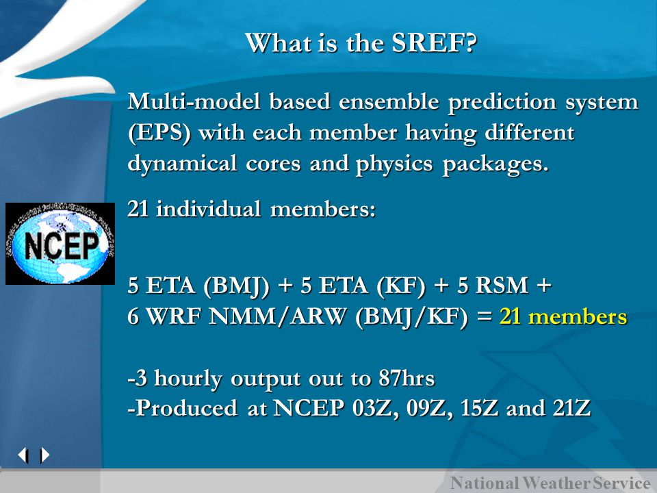 What is the SREF.