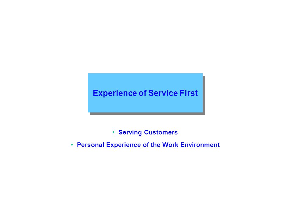 Experience of Service First Serving Customers Personal Experience of the Work Environment