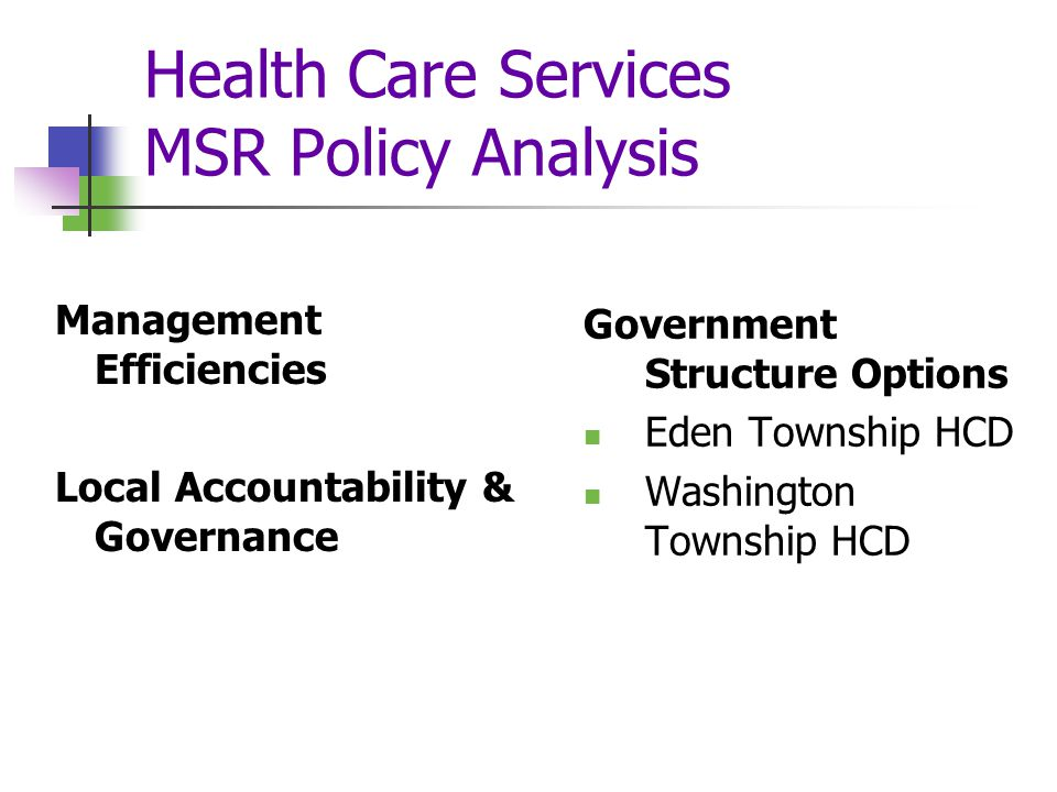 Health Care Services MSR Policy Analysis Management Efficiencies Local Accountability & Governance Government Structure Options Eden Township HCD Washington Township HCD