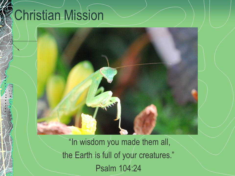 Christian Mission In wisdom you made them all, the Earth is full of your creatures. Psalm 104:24