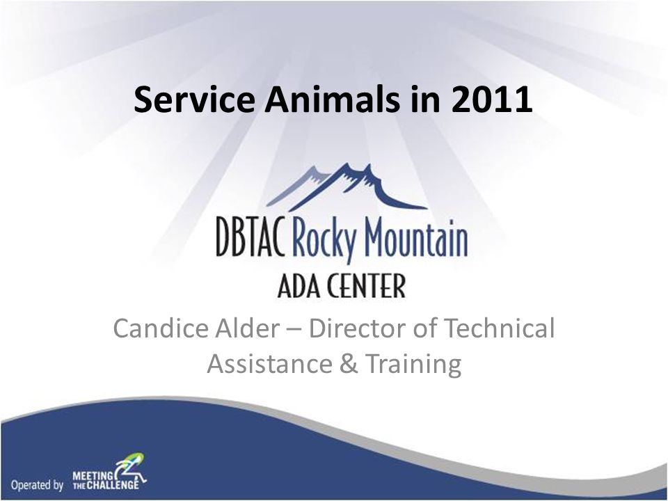 Service Animals in 2011 Candice Alder – Director of Technical Assistance & Training