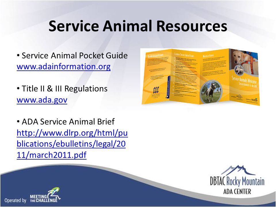 Picture of service animal pocket guide Service Animal Resources Service Animal Pocket Guide   Title II & III Regulations   ADA Service Animal Brief   blications/ebulletins/legal/20 11/march2011.pdf