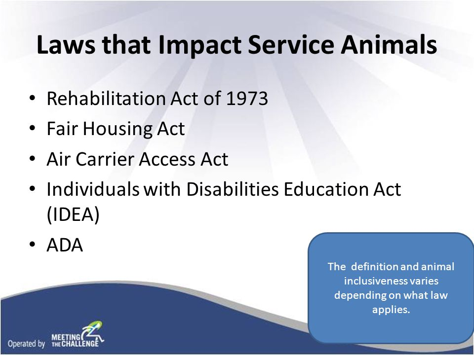 Rehab Act of 1973 Federal Agencies - Employers Education - K-12 - Post Secondary Under Section 504, people with disabilities can request a reasonable accommodation for assistance animals in addition to dogs, including emotional support animals.