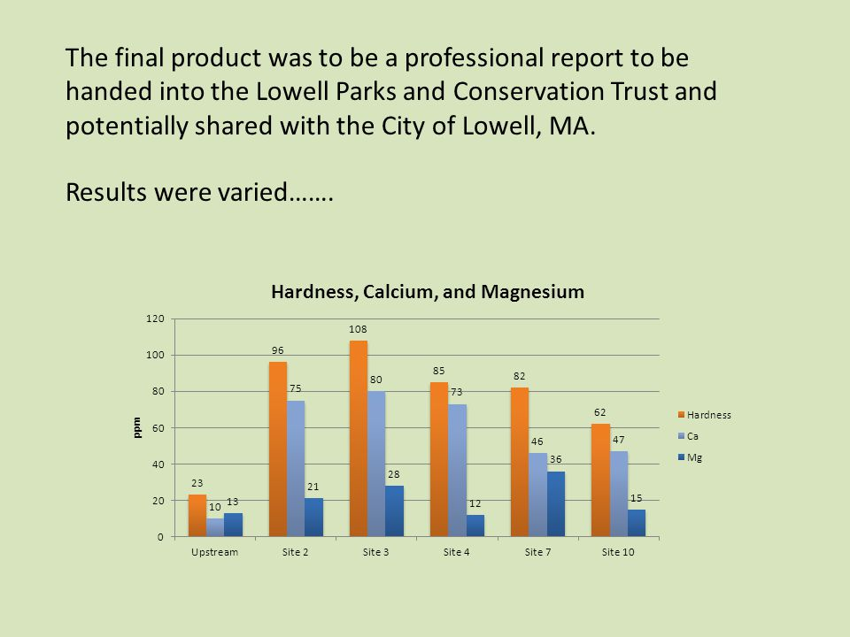 The final product was to be a professional report to be handed into the Lowell Parks and Conservation Trust and potentially shared with the City of Lowell, MA.