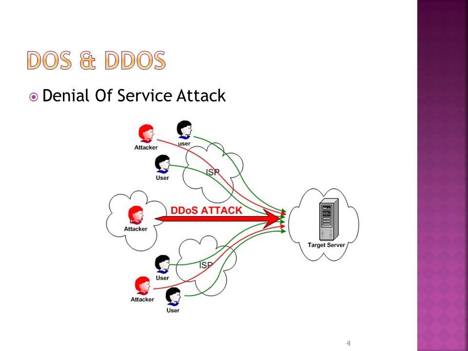 Denial Of Service Attack 4