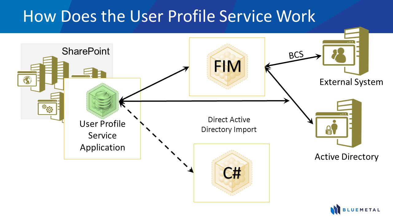 How Does the User Profile Service Work SharePoint User Profile Service Application FIM C# Direct Active Directory Import BCS External System Active Di