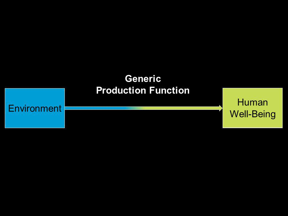 Environment Total Economic Benefit Generic Production Function Human Well-Being