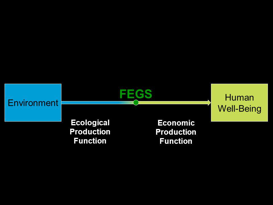 Ecological Production Function Environment Total Economic Value Economic Production Function Human Well-Being FEGS