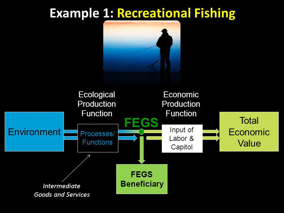 Ecological Production Function FEGS Processes/ Functions Input of Labor & Capitol Environment Total Economic Value FEGS Beneficiary Economic Production Function Intermediate Goods and Services Example 1: Recreational Fishing