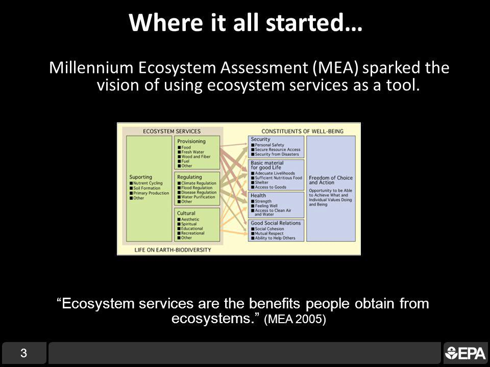 Where it all started… Millennium Ecosystem Assessment (MEA) sparked the vision of using ecosystem services as a tool.