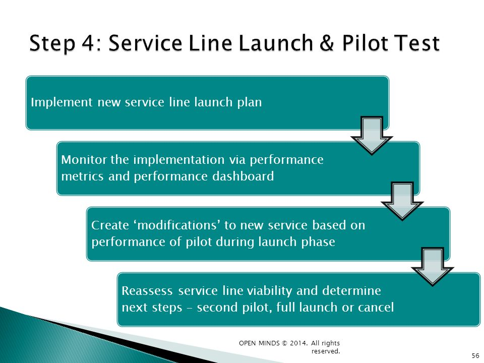 Implement new service line launch plan Monitor the implementation via performance metrics and performance dashboard Create modifications to new servic