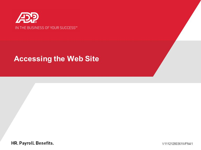 V11121280361WFN41 Accessing the Web Site