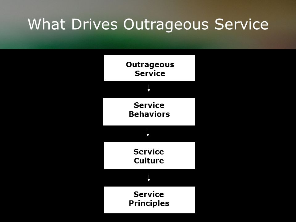 What Drives Outrageous Service Outrageous Service Service Principles Service Culture Service Behaviors