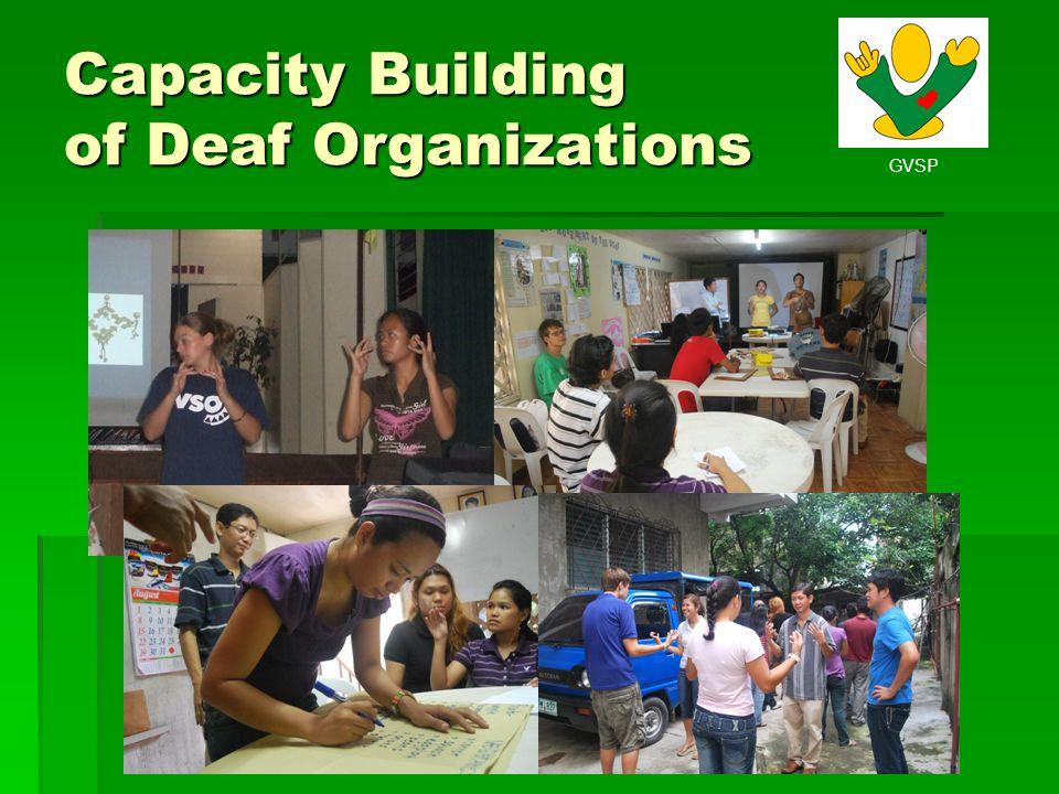 GVSP Capacity Building of Deaf Organizations