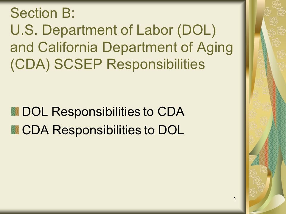 20 Section D: SCSEP Project Responsibilities to Participants Recruitment of Eligible Participants and Enrollment Priorities Eligibility Documentation and Determination (Family, Income, Includable Income for Determining Eligibility, and Excludable Income for Determining Eligibility) Enrollment and Participant Orientation Participant Wage and Fringe Benefits (PWFB) Community Service Assignment - Subsidized Placement Required Services Individual Employment Plan (IEP) and Assessments Specialized (occupational) Training Options On-the-Job Experience (OJE) Basics and Placement Options (OJE – Projects Must Negotiate a Contract with the Employer) SCSEP Participant Durational Limits and Waivers Recertification Requirements Participant Reassignment or Rotation Supportive Services Examples Post-Placement Follow-up First Six (6) Month Period (Retention) Post Placement Follow-up at 12 Month Period Participant Termination
